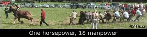 Enlace a La fuerza de una caballo contra 18 personas