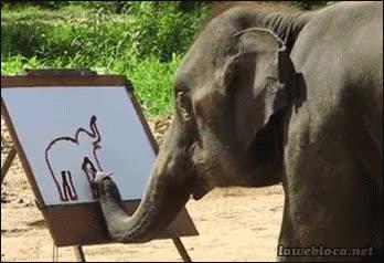 Enlace a Elefantes con más dotes artísticas que muchas personas