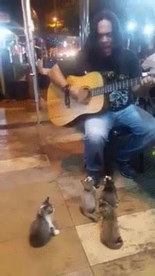 Enlace a Un músico callejero con una de las audiencias más agradecidas