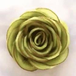 Enlace a Creando una preciosa flor con kiwis