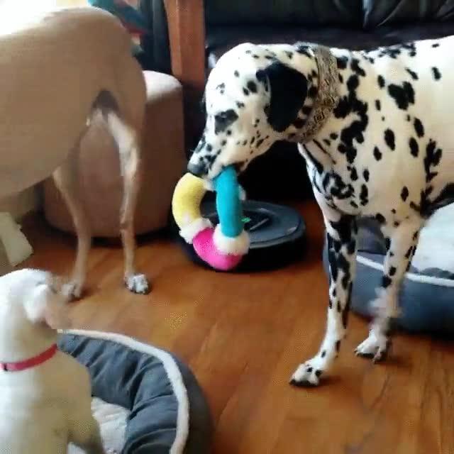 Enlace a ¡Yo también quiero jugar!