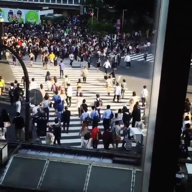 Enlace a El cruce de Shibuya es una auténtica locura