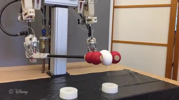 Enlace a Uno de los robots más delicados del mundo...bueno igual no