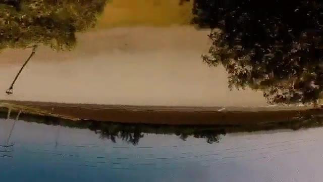 Enlace a Dron haciendo piruetas entre los árboles