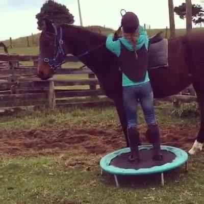 Enlace a La forma más fácil de subir a un caballo si eres bajito