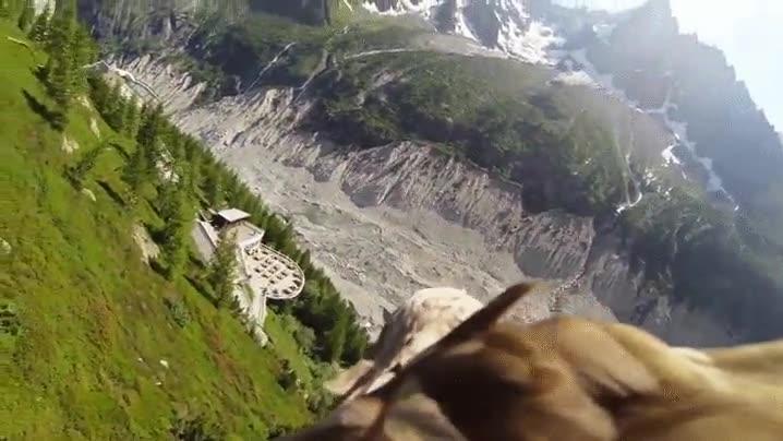 Enlace a Así es como se sienten los hobbits cuando viajan a los lomos de una águila