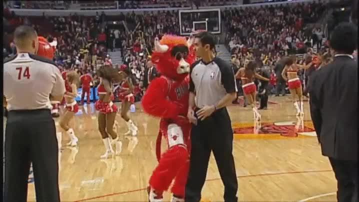 Enlace a La mascota de los Bulls nunca se da por vencida