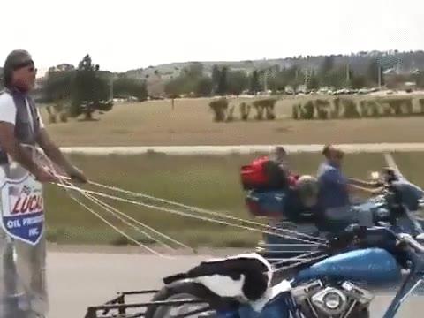 Enlace a No hace falta sacarse el carné de moto si tienes un carruaje