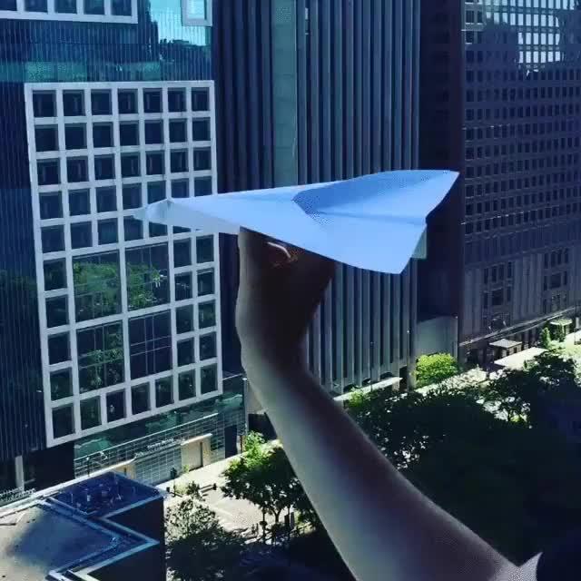 Enlace a El majestuoso vuelo de un avión de papel