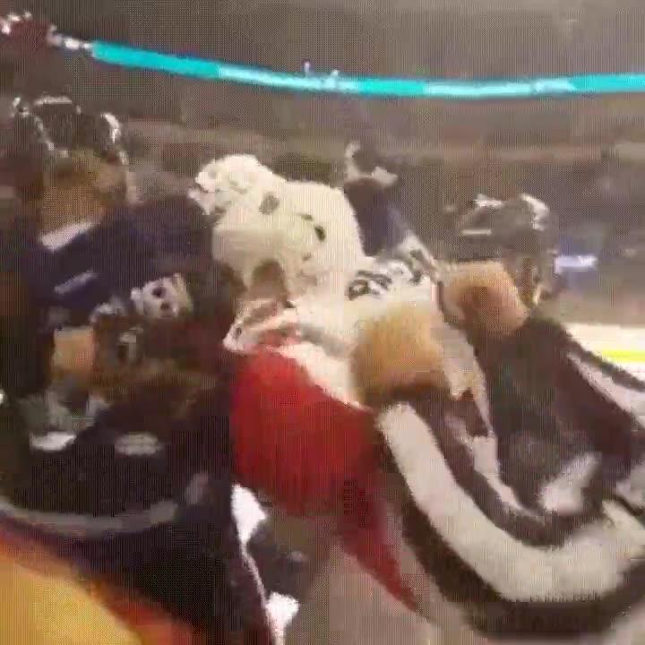 Enlace a Los partidos de hockey se ven mejor si tienes asiento en primera fila