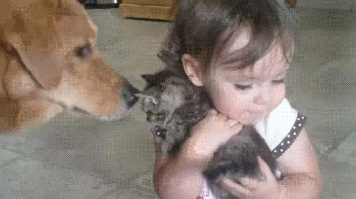 Enlace a Las tres cosas más adorables del mundo