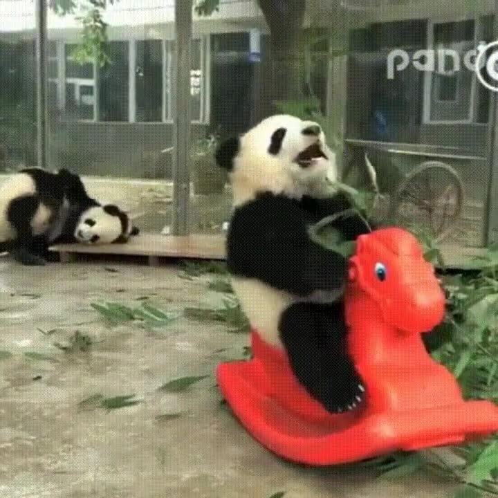 Enlace a Mientras tanto en China...