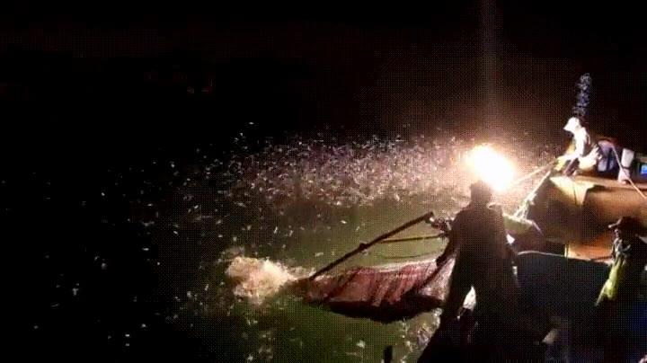 Enlace a Pescando con un lanzallamas. No creo que sea muy legal