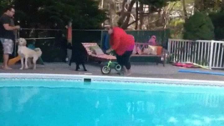 Enlace a Lo que suele pasar cuando acercas un triciclo a una piscina