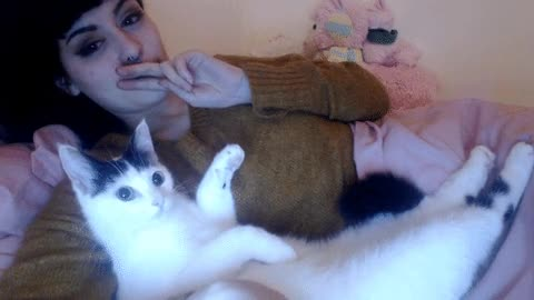 Enlace a Cuando tu gato tiene un don natural para seducir a la cámara
