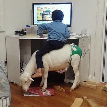 Enlace a La cabra se ha comido mis deberes. Esta vez de verdad