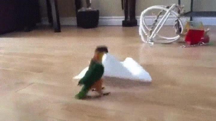 Enlace a ¡Tengo un pañuelo! ¡Tengo un pañuelo! ¡Tengo un pañuelo!