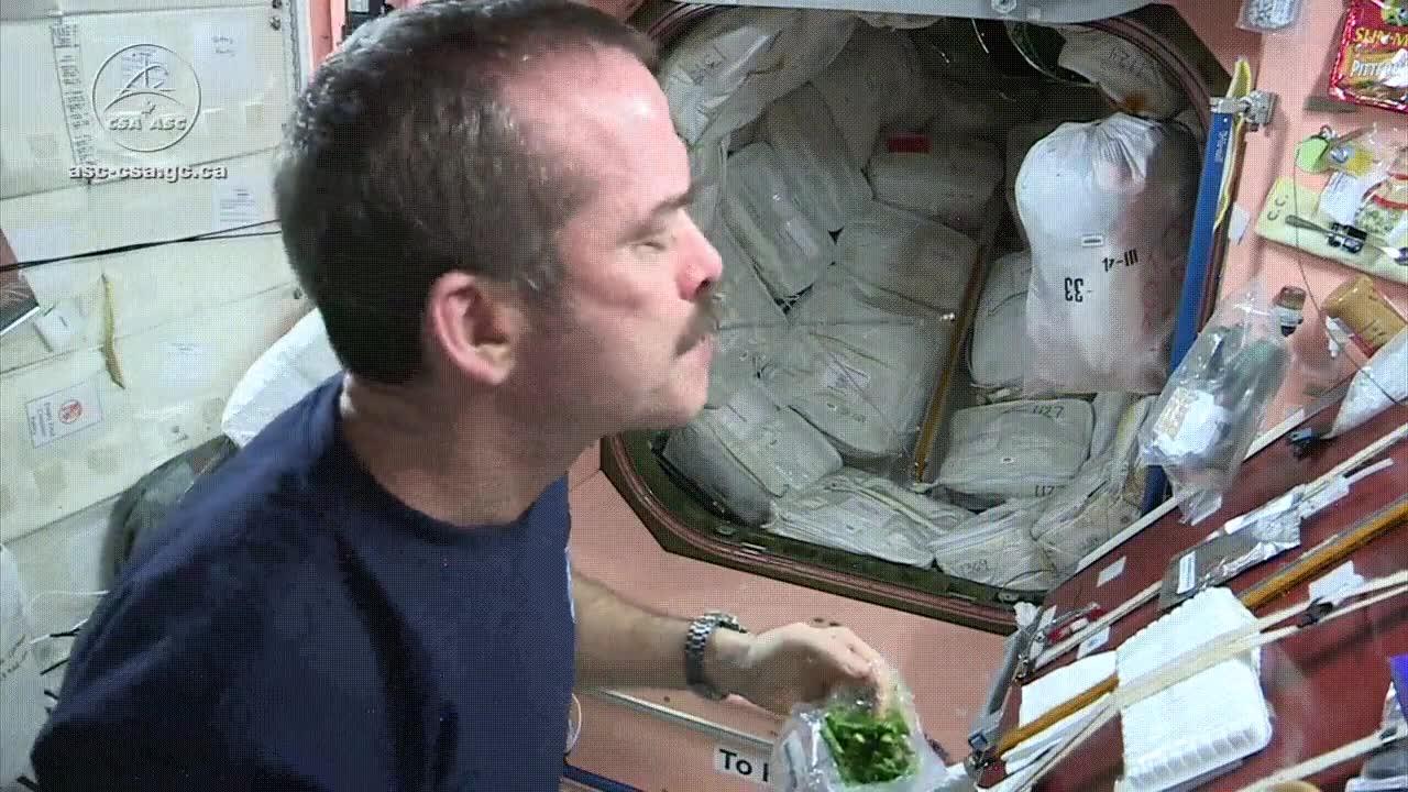 Enlace a Comer espárragos en el espacio puede llegar a ser algo muy divertido