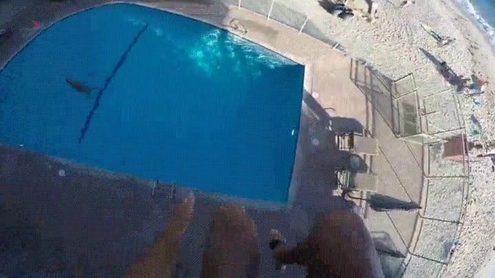 Enlace a ¿Te atreverías a dar un salto tan peligroso?