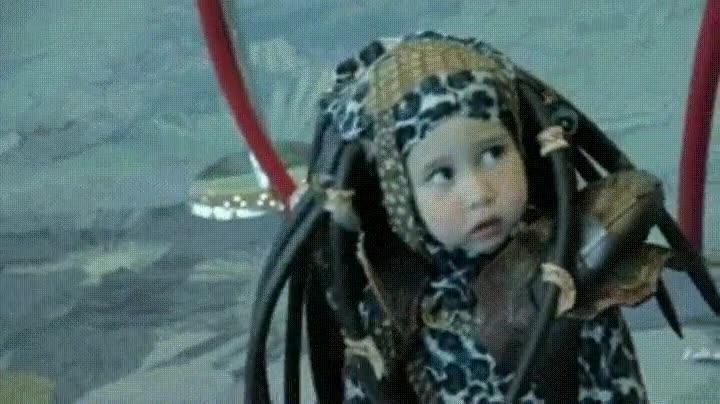 Enlace a El Predator más adorable que has visto y que verás jamás