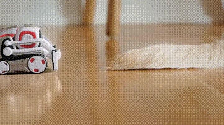 Enlace a Robot obsesionado con trollear al perro de casa