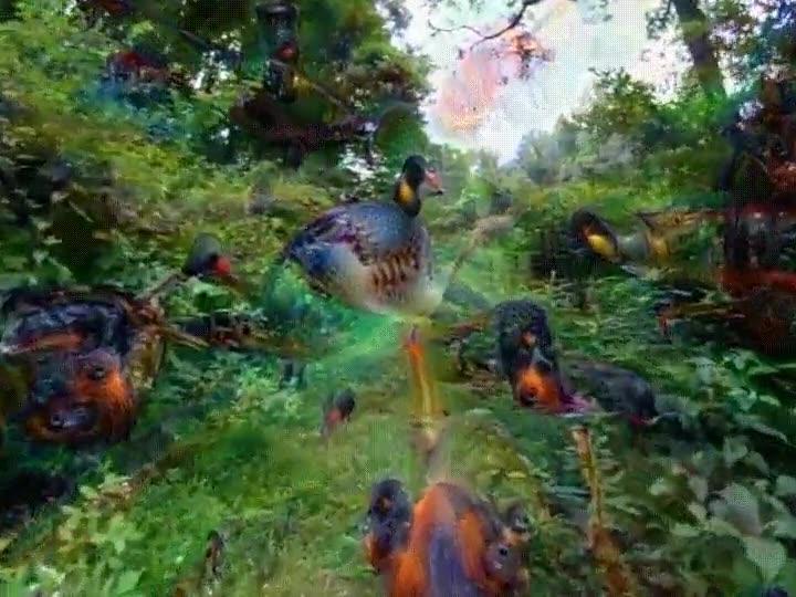 Enlace a Estos es lo que pasa cuando experimentas con LSD