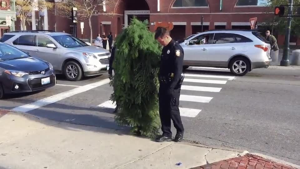 Enlace a Agentes de la ley acompañando a un arbusto borracho hasta casa