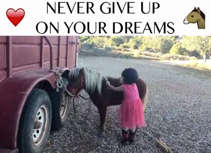 Enlace a Persigue tus sueños por pequeños que sean. La recompensa es enorme