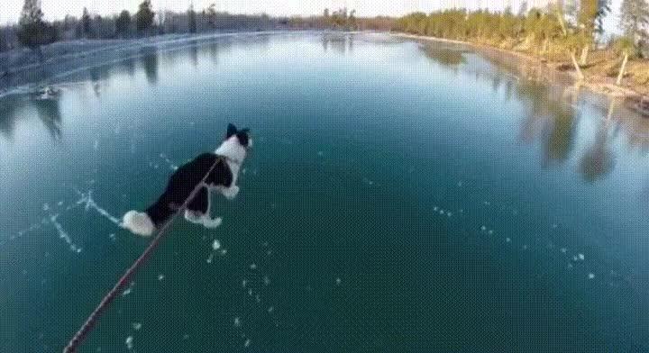 Enlace a Cuando tienes la suerte de ser el primero en patinar en un lago congelado