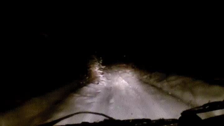 Enlace a No hay nada peor que conducir de noche y ver cosas raras