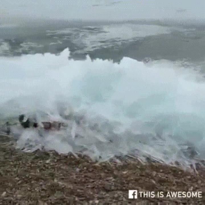 Enlace a El increíble efecto de unas olas congeladas