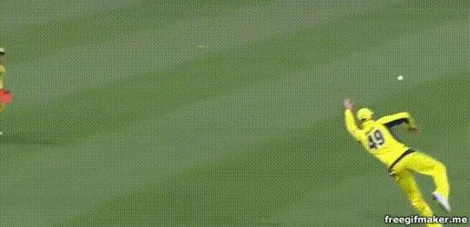 Enlace a Atrapando una pelota de la forma más espectacular posible