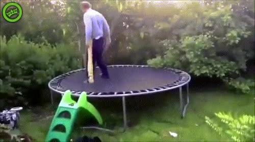 Enlace a Papá enseñando a sus hijos cómo se hace