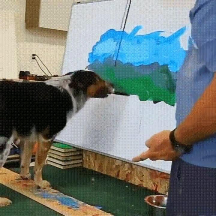 Enlace a Perro pintando un increíble paisaje con un poco de ayuda de su dueño