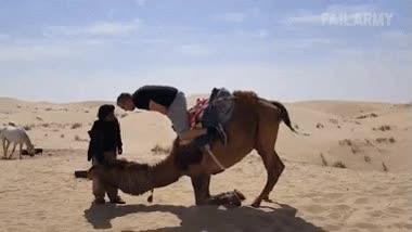 Enlace a Creo que no es la mejor forma de bajar de un camello