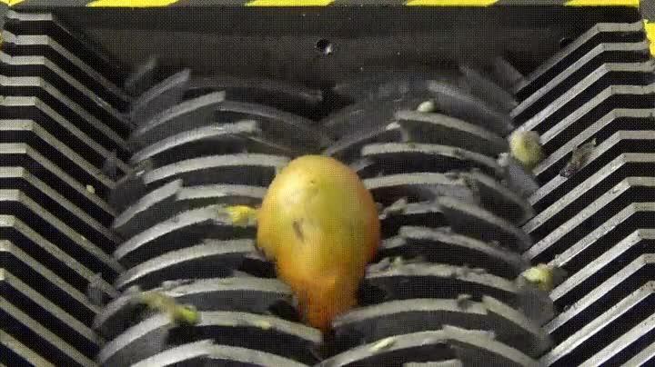 Enlace a No lo mires si eres una persona sensible y te encantan los mangos