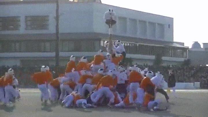 Enlace a El incréible deporte japonés conocido como Buotaoshi
