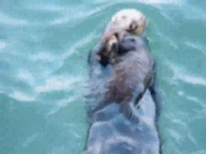 Enlace a Cuando te estás ahogando pero mamá viene al rescate