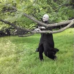 Enlace a A Voldemort por fin le han dado una buena noticia