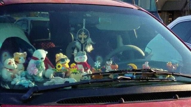 Enlace a El coche de un verdadero fan de las cosas que se mueven solas