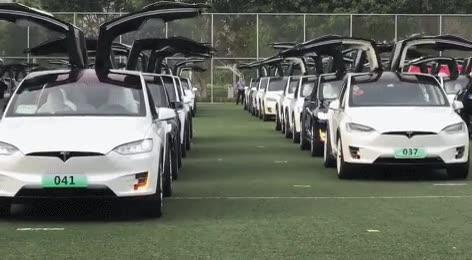 Enlace a Campo de entrenamiento de los coches de Tesla. Entrenan hasta ser perfectos