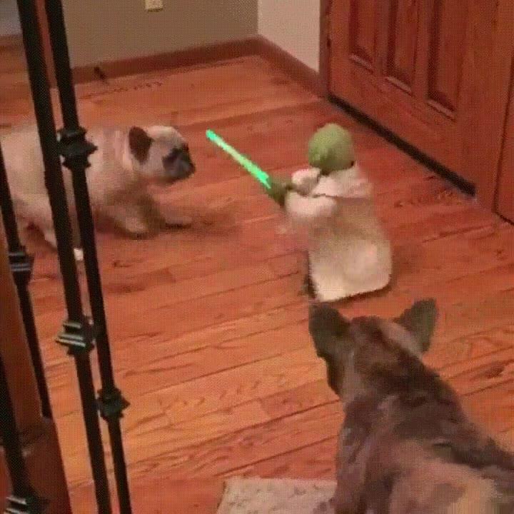 Enlace a La batalla más épica que se ha visto en toda la saga Star Wars