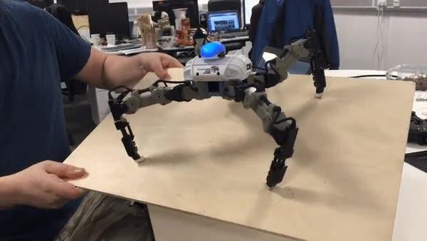 Enlace a Robots capaces de resistir cualquier terremoto