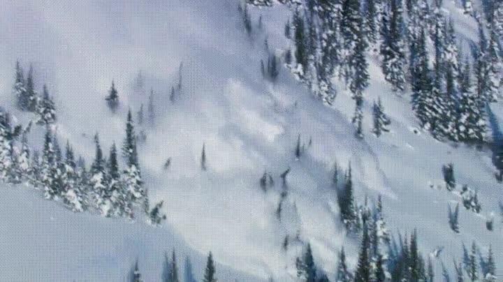 Enlace a El devastador poder de una avalancha