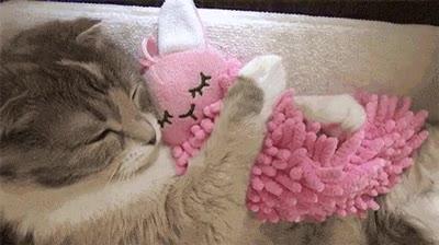 Enlace a Lo más adorable que verás hoy