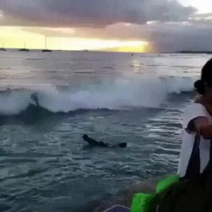 Enlace a El aterrizaje perfecto para un surfero en apuros