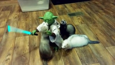 Enlace a La batalla más difícil que ha tenido que combatir el Maestro Yoda