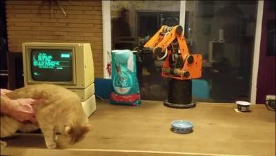 Enlace a Gatos que no soportan ser alimentados por máquinas de los años 80