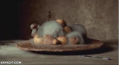 Enlace a El proceso de descomposición de un bodegón de frutas