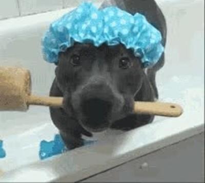 Enlace a Algo me hace intuir que ha llegado la hora del baño